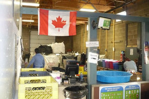 A Canadian flag brightens a sorting station at Leduc Bottle Depot